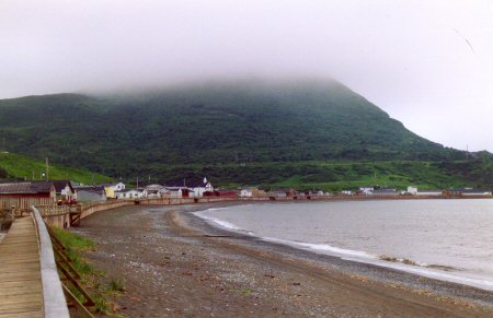 Trout River, Boardwalk by the Sea
